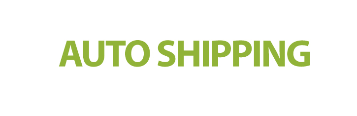 auto shipping banner